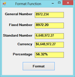 Format Function in Visual Basic 2017